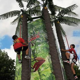 Tree boys SQ
